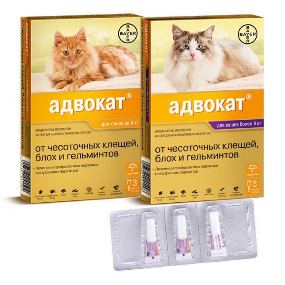 Bayer Advocate Адвокат, капли для кошек 1 пипетка