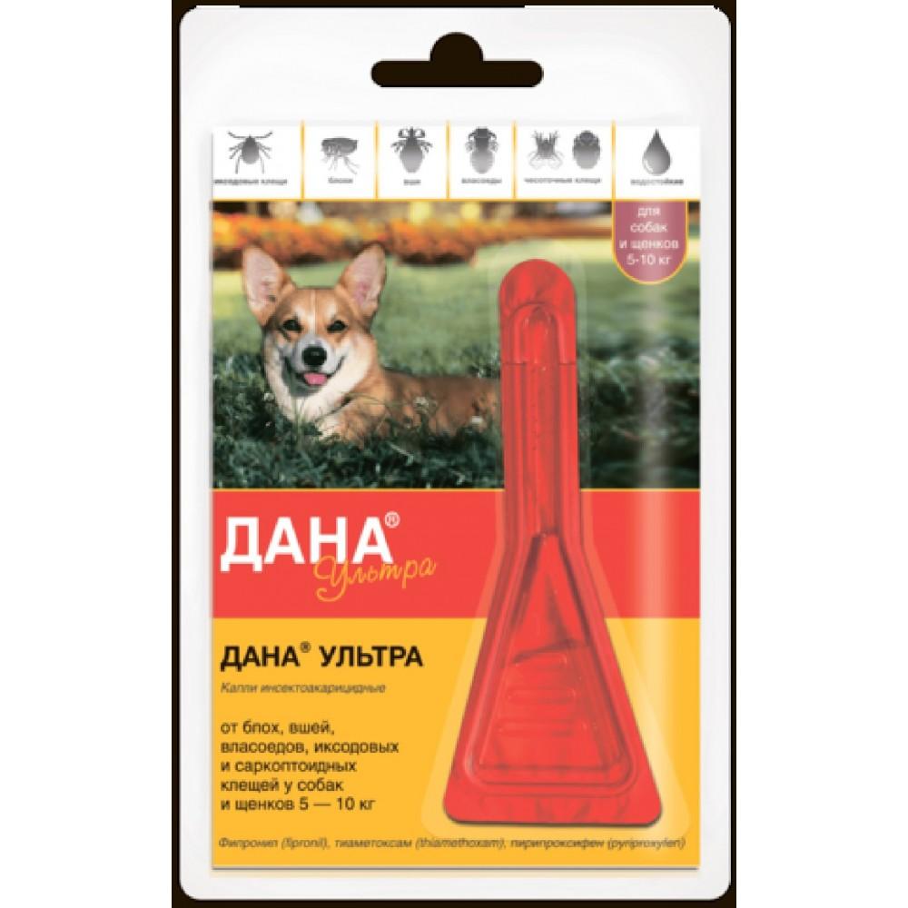 Apicenna Дана Ультра для кошек и котят до 4 кг, 1 пипетка