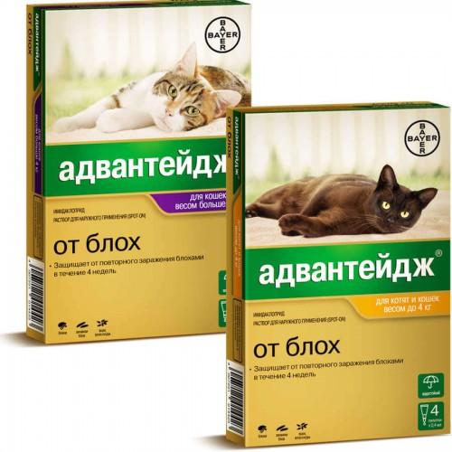 Адвантейдж для кошек, 1 пипетка