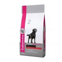Dog DNA - Корм для лабрадоров