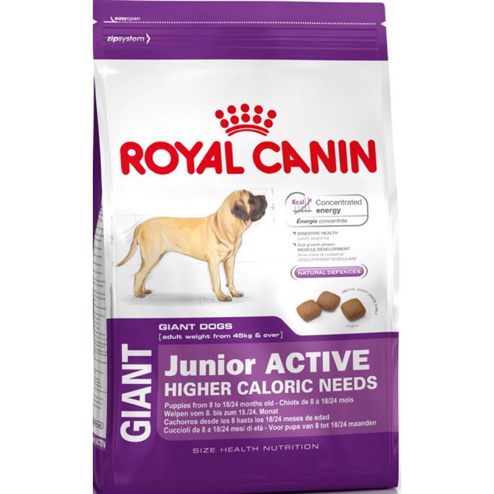 """Royal Canin Giant Junior Active - Корм для щенков очень крупных размеров с высокими энергетическими потребностями """"Роял Канин Джайнт Юниор Актив"""""""