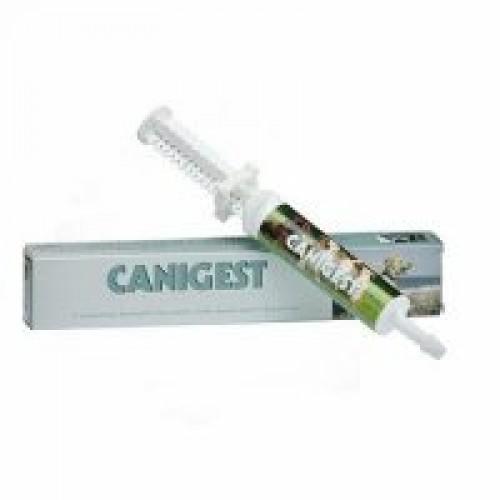 Канигест, паста пробиотик, 1 шприц-дозатор