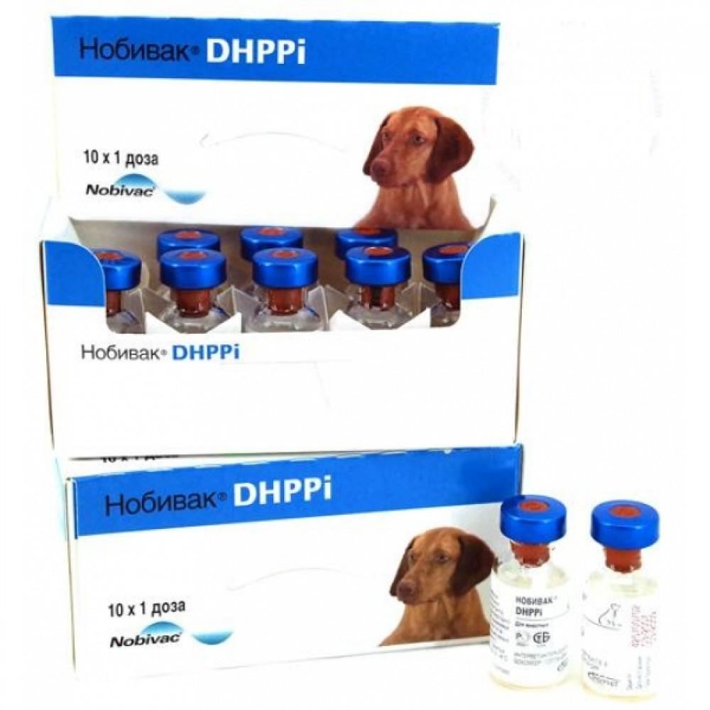 Intervet Нобивак DHPPi (Nobivac DHPPi), фл. 1 мл (1 доза)
