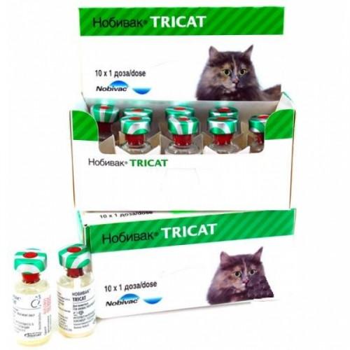 Нобивак Tricat Trio с растворителем (Нобивак Дилуент), фл. 1 доза (сухая вакцина)