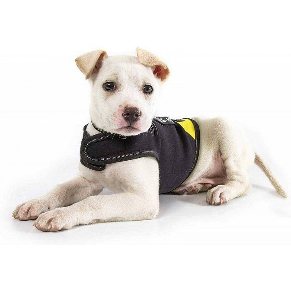 Julius-K9 Neoprene IDC® - Жилет для собак черно-желтый