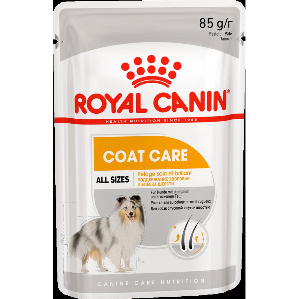 """Royal Canin Coat Care - Влажный корм для взрослых собак с тусклой и сухой шерстью """"Роял Канин Коат Кэа Эдалт"""""""