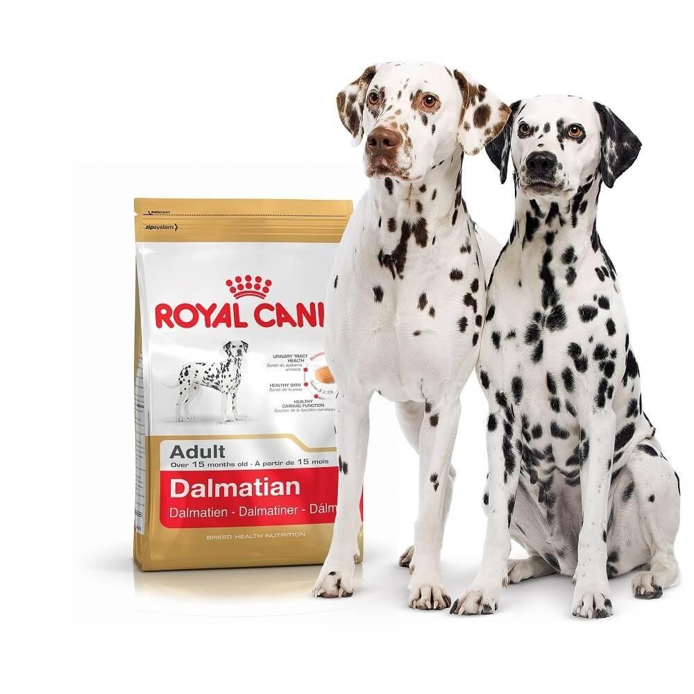 """Royal Canin Dalmatian Adult - Корм для взрослых собак породы далматин """"Роял Канин Эдалт"""""""