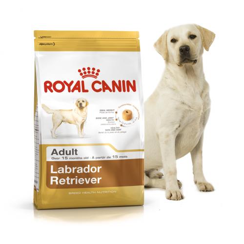 """Labrador Retriever Aduit - Корм для взрослых собак породы лабрадор ретривер """"Роял Канин Эдалт"""""""