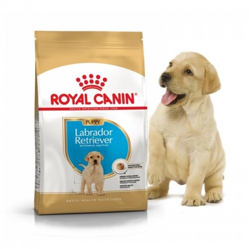 """Labrador Retriever Puppy - Корм для щенков породы лабрадор ретривер """"Роял Канин Паппи"""""""