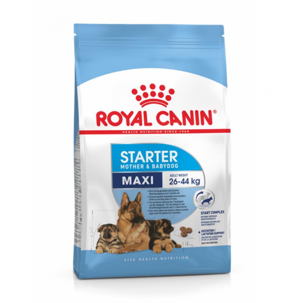 """Royal Canin Maxi Starter - Корм для щенков крупных пород до 2-месячного возраста и для беременных и кормящих собак """"Роял Канин Макси Стартер"""""""