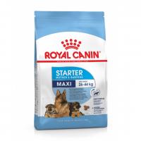 """Maxi Starter - Корм для щенков крупных пород до 2-месячного возраста и для беременных и кормящих собак """"Роял Канин Макси Стартер"""""""