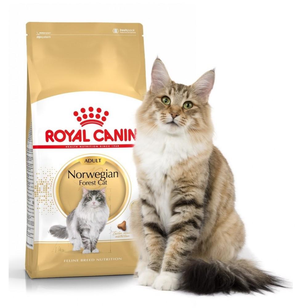 "Royal Canin Norwegian Forest Adult - Корм для взрослых кошек породы норвежская лесная ""Роял Канин Эдалт"""