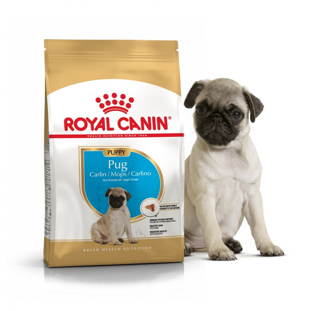 "Royal Canin Pug Puppy - Корм для щенков породы мопс ""Роял Канин Паппи"""