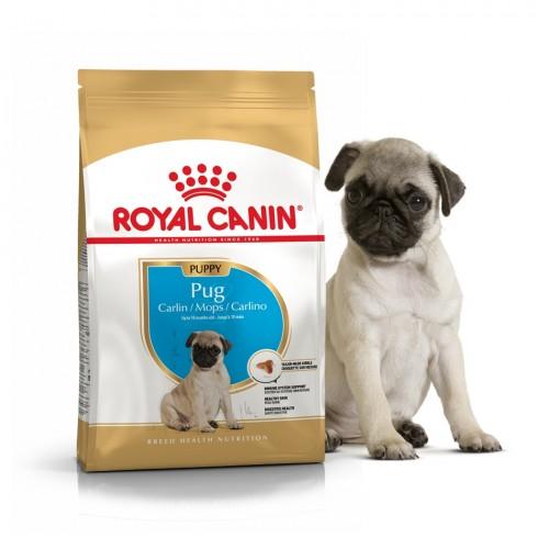 """Pug Puppy - Корм для щенков породы мопс """"Роял Канин Паппи"""""""