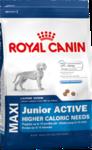 Royal Canin Maxi Junior Active / Макси Юниор Актив Роял Канин Корм для щенков крупных собак (вес взрослой собаки от 26 до 44 кг) с высокими энергетическими потребностями в возрасте до 15 месяцев